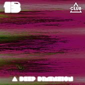A Deep Dimension, Vol. 13 by Various Artists