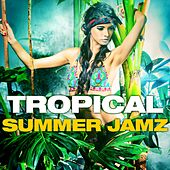 Tropical Summer Jamz by Various Artists