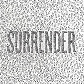 Surrender by The Smith Street Band