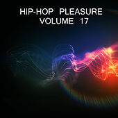 Hip-Hop Pleasure, Vol.17 by Various Artists