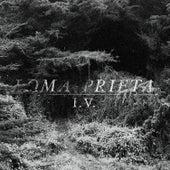 I.V. by Loma Prieta