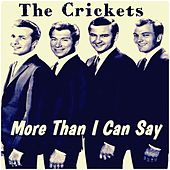 More Than I Can Say by Bobby Vee