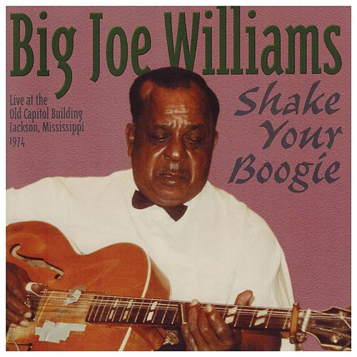 Shake Your Boogie by Big Joe Williams