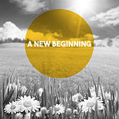 A New Beginning by Various Artists