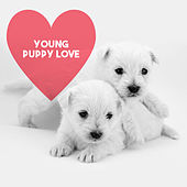Young Puppy Love by Various Artists