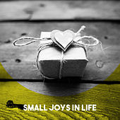 Small Joys in Life by Various Artists