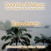 Rainstorms by Suzanne Doucet & Chuck Plaisance