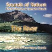 The River by Suzanne Doucet & Chuck Plaisance