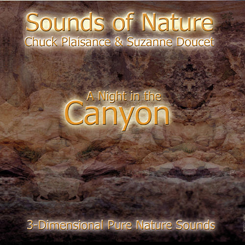 A Night In The Canyon by Suzanne Doucet & Chuck Plaisance