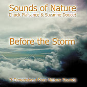 Before The Storm by Suzanne Doucet & Chuck Plaisance
