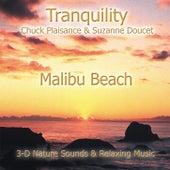 Malibu Beach by Suzanne Doucet & Chuck Plaisance