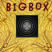 Big Box by Mars Lasar