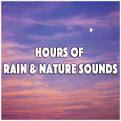 Hours of Rain & Nature Sounds by Various Artists