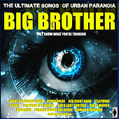 Big Brother by Various Artists