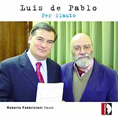 Luis de Pablo: Per flauto by Various Artists