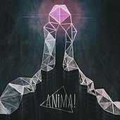 Anima! by Anima