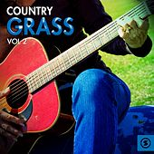 Country Grass, Vol. 2 by Various Artists