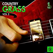 Country Grass, Vol. 3 by Various Artists