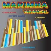 Marimba Tropical by Various Artists