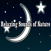 Relaxing Sounds of Nature by Various Artists