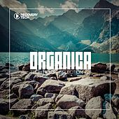 Organica #28 by Various Artists