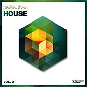 Selective: House, Vol. 2 by Various Artists