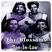 Son-In-Law by The Blossoms