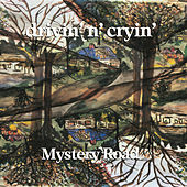 Mystery Road by Drivin' N' Cryin'