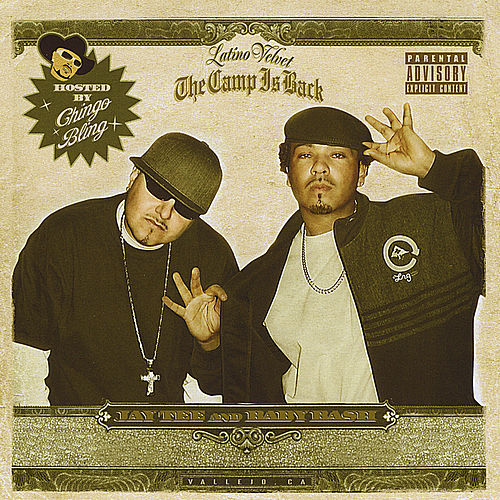 The Camp Is Back by Various Artists