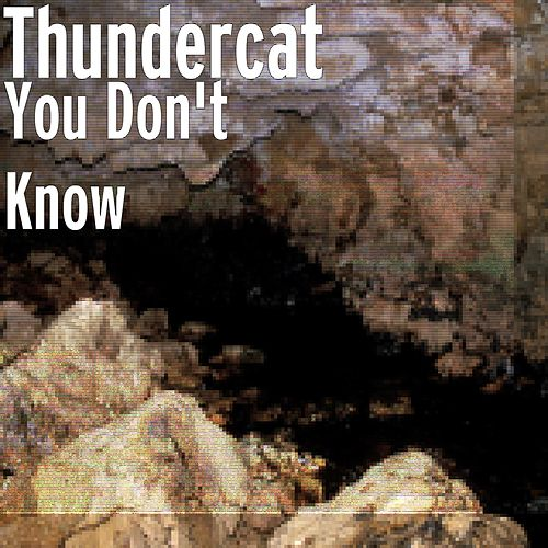 You Don't Know by Thundercat
