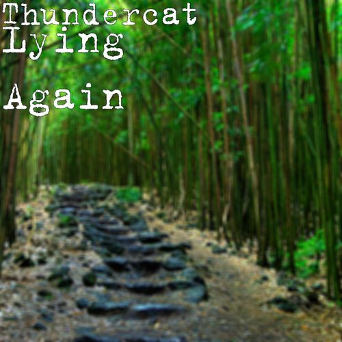 Lying Again by Thundercat