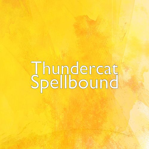 Spellbound by Thundercat