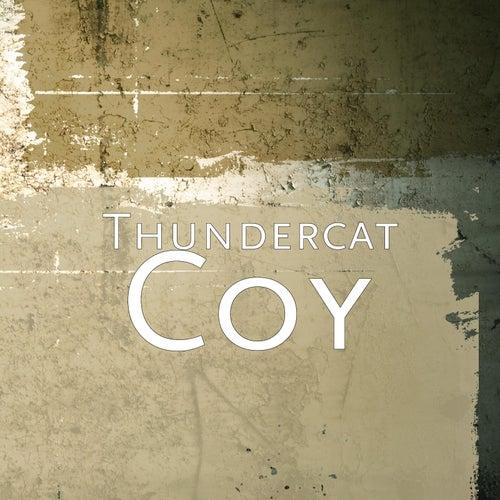Coy by Thundercat
