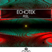 Feel by Echotek