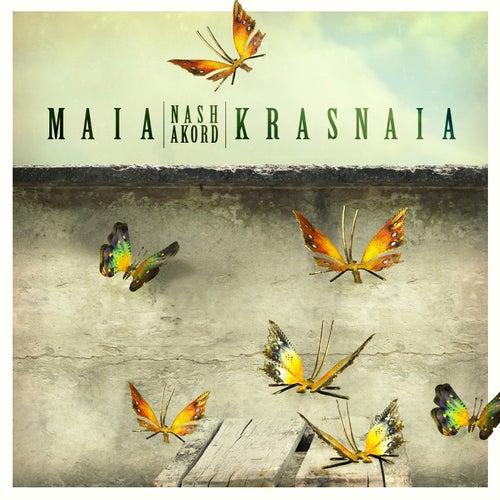 Nash Akord by Buddha Sounds