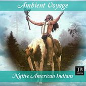 Ambient Voyage: Indians (Native America) by Fly Project