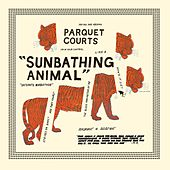 Sunbathing Animal + Content Nausea by Parquet Courts