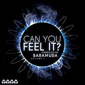 Can You Feel it?, Vol. 7 (Compiled By Baramuda) by Various Artists