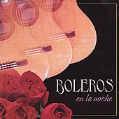 Boleros en la Noche by Various Artists
