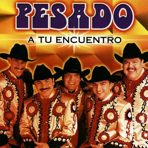 A Tu Encuentro by Pesado