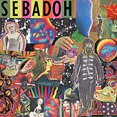 Smash Your Head On The Punk Rock by Sebadoh