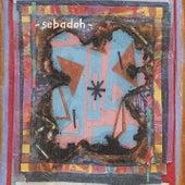 Bubble & Scrape by Sebadoh