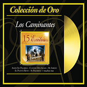 Coleccion de Oro by Los Caminantes