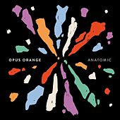 Anatomic by Opus Orange