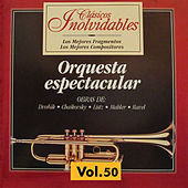 Clásicos Inolvidables Vol. 50, Orquesta Espectacular by Various Artists