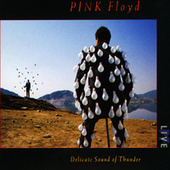 Delicate Sound of Thunder (Live) by Pink Floyd