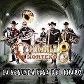 La Segunda Fuga del Chapo by Colmillo Norteno