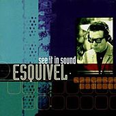See It in Sound by Esquivel
