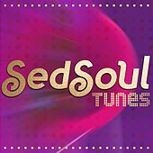 SedSoul Tunes by Various Artists