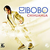 Chihuahua by Various Artists